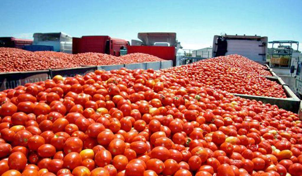 México acudirá a la OMC ante posible proteccionismo agrícola de EU