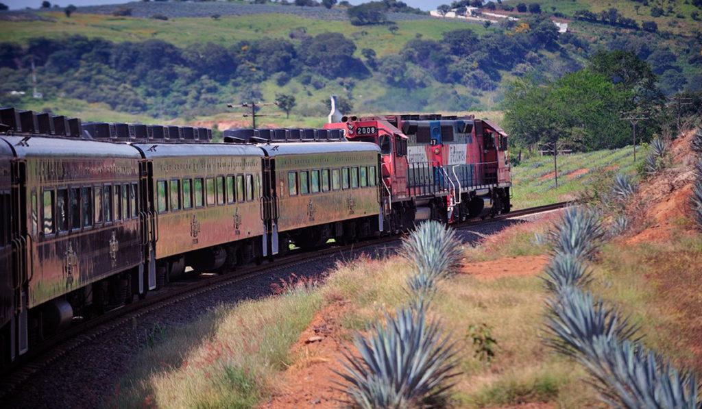 Senado reduce vigencia de concesiones ferroviarias; AMF acusa inconstitucionalidad