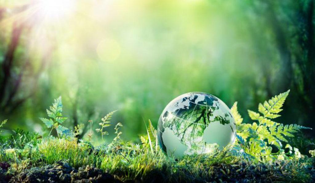 Buscan incentivos para fomentar el turismo sostenible