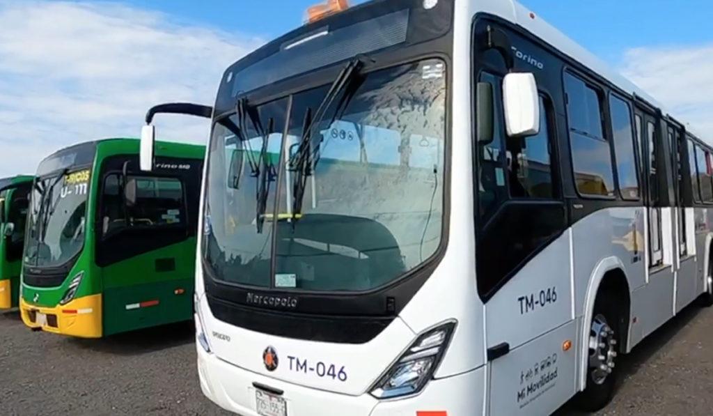 Llegan 336 buses nuevos para operar en AMG