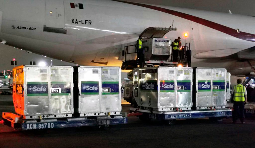 Llega a México el vuelo 100 con el embarque más grande de vacunas